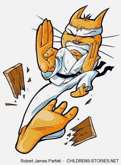 Children's Story: Kung Fu Cat by Robert James Parfett